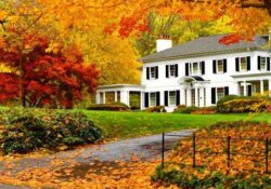 How To Prepare Your Home For The Fall
